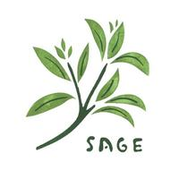 Sages Health Store